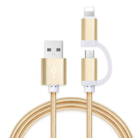 iphone+Micro 2 in 1 data cable